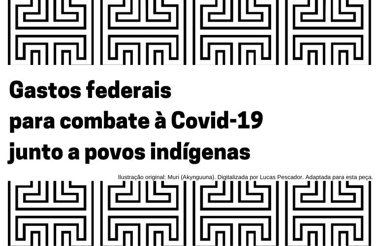 Confira a base de dados com o gasto federal no combate à Covid-19 junto a povos indígenas